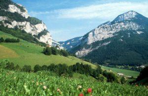 поехать отдохнуть в Абхазии