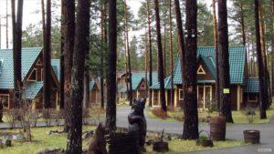 Где незабываемо отдохнуть в Горном Алтае летом и зимой