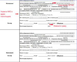 Как самостоятельно написать заявление о выдаче загранпаспорта на 5 лет