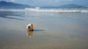 Где можно отдохнуть в августе на море