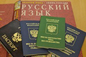 Как именно предоставляется вид на жительство для лица без гражданства в России