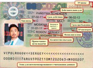 Где можно посмотреть номер шенгенской визы